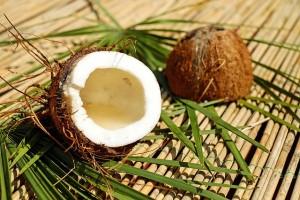 coconut-1501334_640